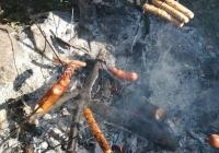 dzien-ziemniaka-4